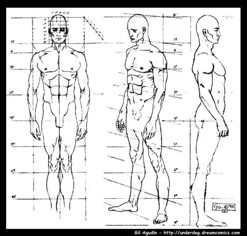Proyecto 5: Anatomía | Módulo de Imagen Ilustrativa